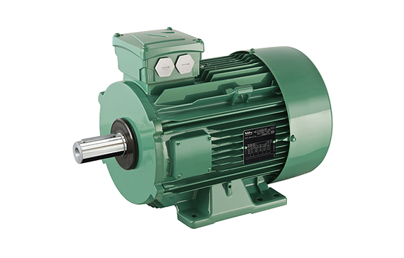 High Reliability Induction Motor